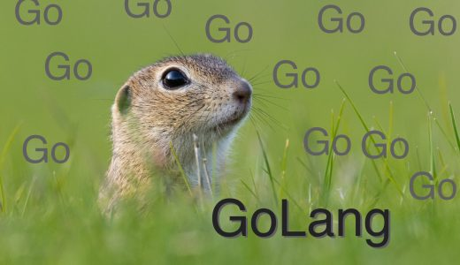 【初心者向け】Go言語(golang)とは?メリットや特徴まとめ