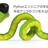 Pythonエンジニアの年収相場と年収アップのコツを大公開